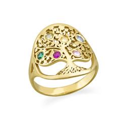 Familie Stamboom Sieraden – Geboortesteen Ring in Goudkleur Productfoto